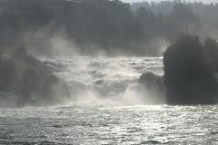 2bis Les chutes du Rhin