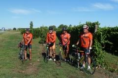 1 Les vignes Croates