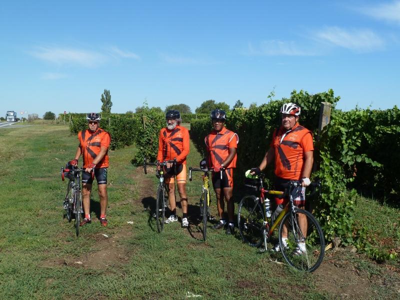 H1 Les vignes Croates